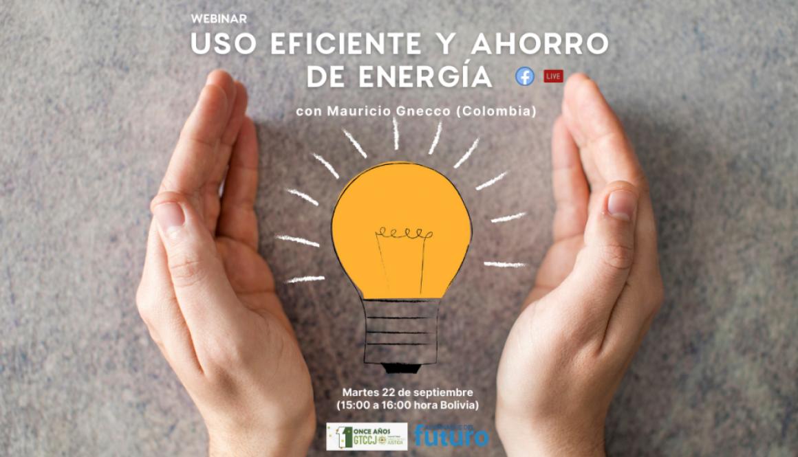 webinar energía