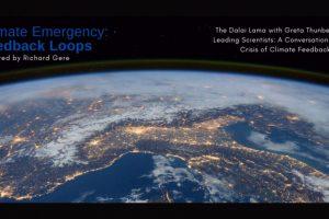 Climate Emergency: Feedback Loops