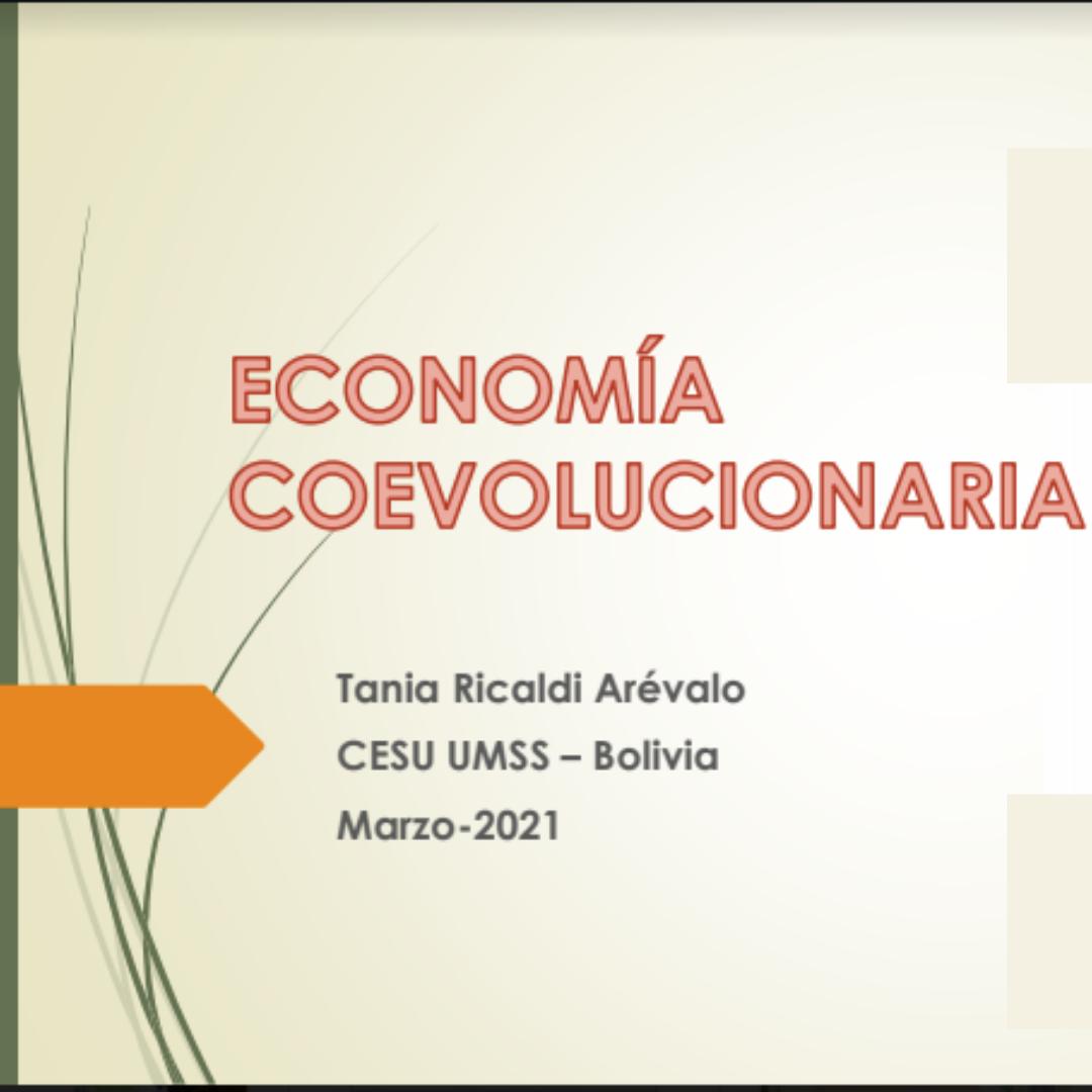 economía coevolucionaria