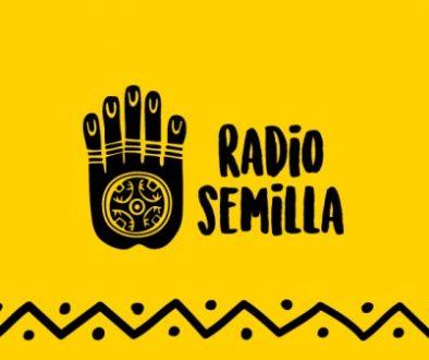 radio-semilla-portada